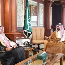 أمير منطقة جازان يستقبل رئيس هيئة الهلال الأحمر السعودي