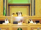 مجلس الوزراء.. ولي العهد يشدد على تنفيذ توجيهات الملك لخدمة الحجاج