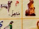"""افتتاح معرض """"الصين – البلدان العربية"""" بحضور ملوك ورؤساء حكومات"""