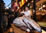 بيع سمكة تونة بـ 4.5 مليون ين في اليابان
