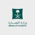 """برؤية واضحة وخطط طموحة.. هكذا تُوجت """"التجارة"""" بجائزة أفضل وزارة عربية"""