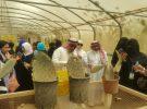 وكيل إمارة جازان يدشن حملة البريد السعودي للتسجيل بالعنوان الوطني